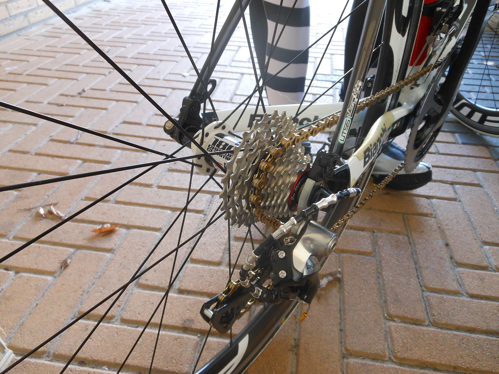 Janny's-racing-bike-with-our-cassette-and-DT-Swiss-Hub-(2016)